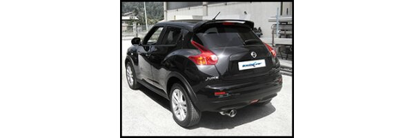 1.5 DCI 110PS 2010-